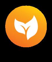 Lu Jong teacher Logo